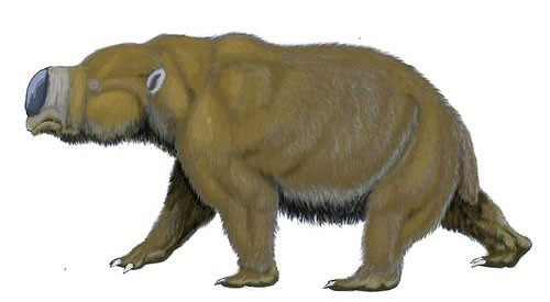 史前13种比恐龙更诡异的动物~~~你知道吗 ?
